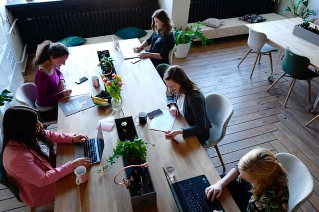 bunch of women working on their laptops